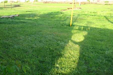 Лужайка пострижена