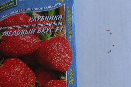 Семена клубники крупноплодной